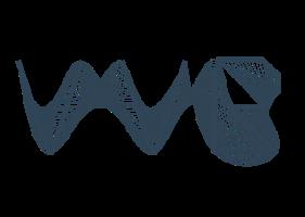 Visualization & Virtual Reality Group Logo